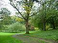 Pittencrieff Park in Dunfermline.jpg