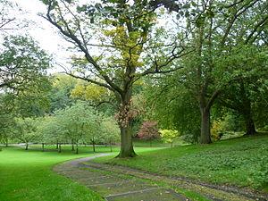 Pittencrieff Park - Pittencrieff Park
