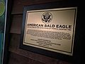 "Plaque for ""DT"" the Bald Eagle (31695402471).jpg"