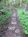 Plateway between Flour Mill ^ Parkend - panoramio.jpg