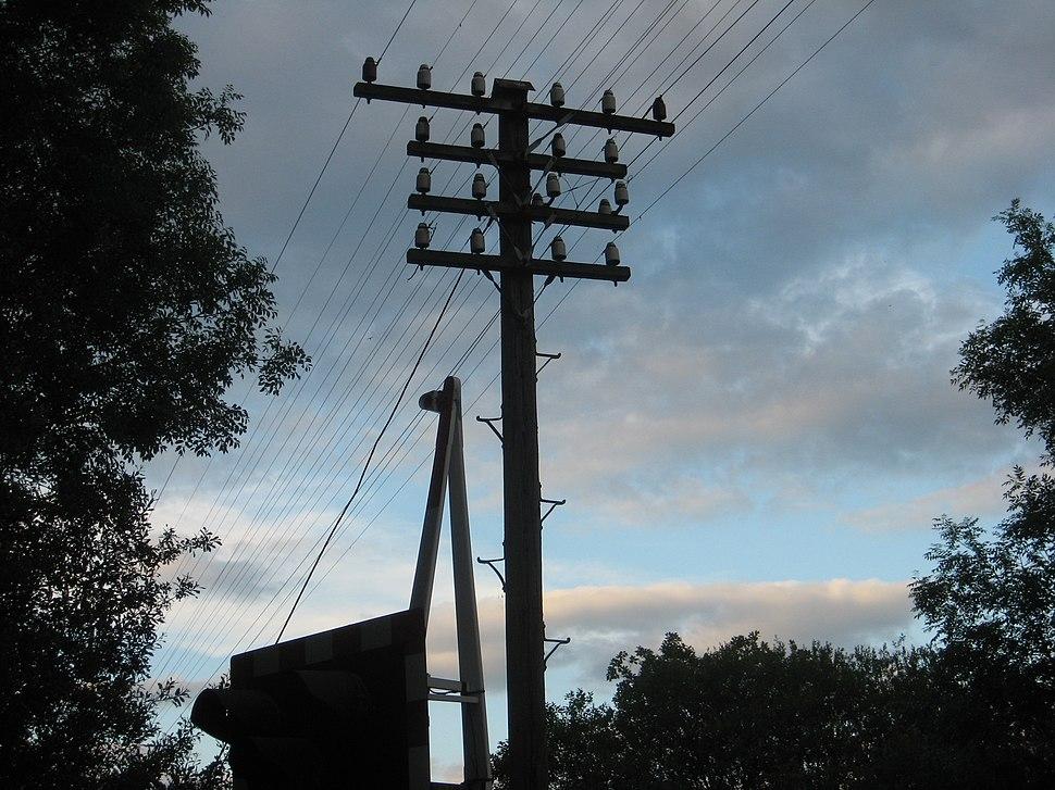 Pole Route