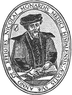 Portrait-of-Monardes-1569.png