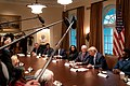 President Trump at a Roundtable about Education Choice (49198970111).jpg