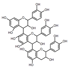 Chemical structure of procyanidin C2
