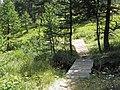 Promenade le long du torrent de Rebrun (Vars, Sainte-Marie) - panoramio (4).jpg