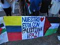 Protesta Pro-Palestina Santiago de Cali 2014 16.jpg