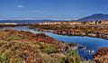 Puntas Entinas wetland park (9612900903).jpg