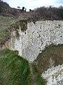Purbeck , Handfast Point Cliffs - geograph.org.uk - 1711785.jpg