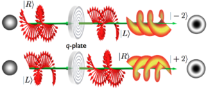 Angular momentum of light - The q-plate effect for left and right-hand circular polarizations.
