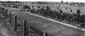 Queensland State Archives 1400 Eventide Home Sandgate October 1949.png