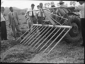 Queensland State Archives 1728 Department of Agriculture and Stock Cattle Husbandry Branch field day at a farm in the Upper Coomera Gold Coast August 1954.png
