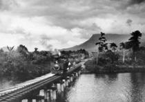 Queensland State Archives 858 Russell River and Bellenden Ker Babinda North Queensland c 1927.png