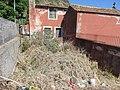 Quinta da Piedade, Calheta, Madeira - IMG 4929.jpg