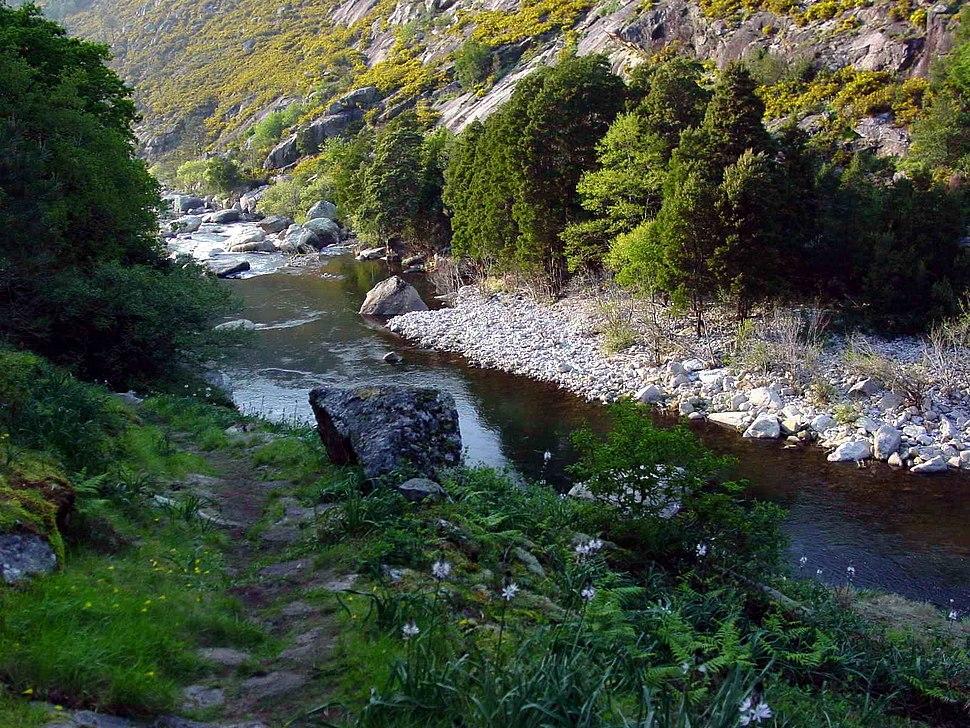 Río Tambre GDFL200302