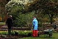 RHS Wisley Garden Surrey 18.jpg