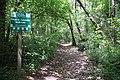 RNR Bois des Roches-7 (36).jpg