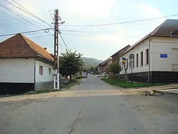 RO CS Lapusnicel (4).JPG