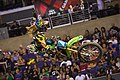 Racers - Vicki Golden 2011.jpg