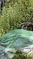 Rainbow Springs, Rotorua - panoramio.jpg