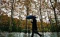 Rainy day of Tehran - 20 November 2011 43.jpg
