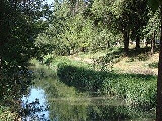 Bîc River river in Moldova