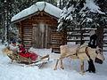 Reindeer Rides.jpg