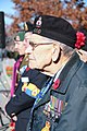 Remembrance Day Veteran at National War Memorial Ottawa 2010.jpg