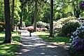 Rhododendronpark Bremen 20090513 039.JPG