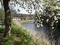 River Ebbw looking downriver - geograph.org.uk - 756027.jpg