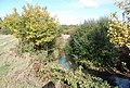 River Medway - geograph.org.uk - 1549368.jpg