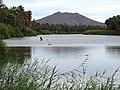 River Scene - San Ignacio - Baja California Sur - Mexico (23675579140).jpg