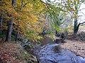 River Teign - geograph.org.uk - 712077.jpg