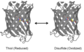 RoGFP1-R7 Oxidized and Reduced.png