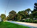 Road - panoramio (116).jpg