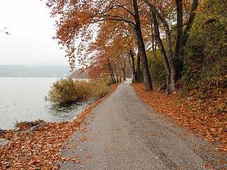 Lake Orestiada - Image: Road next to Orestias Lake in Kastoria Prefecture