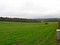 Rockfield Plantation - geograph.org.uk - 335326.jpg