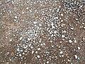 Rocks in Oman.jpg