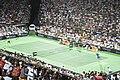 Roger Federer and Juan Martín Del Potro en Tigre (8318274463).jpg