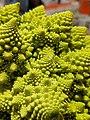 Romanesco Broccoli Close Up.jpg