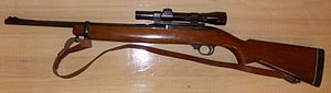 Ruger Model 44 - Ruger Model 44 with scope