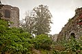 Ruiny zamku Tenczyn, Rudno A-12 07.jpg