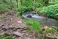 Ruisseau des Palanges (12).jpg
