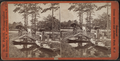 Rustic Bridge to Fairy Island, Ocean Grove, from Robert N. Dennis collection of stereoscopic views.png