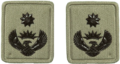 SANDF Rank Insignia Lt Colonel embossed badge.png