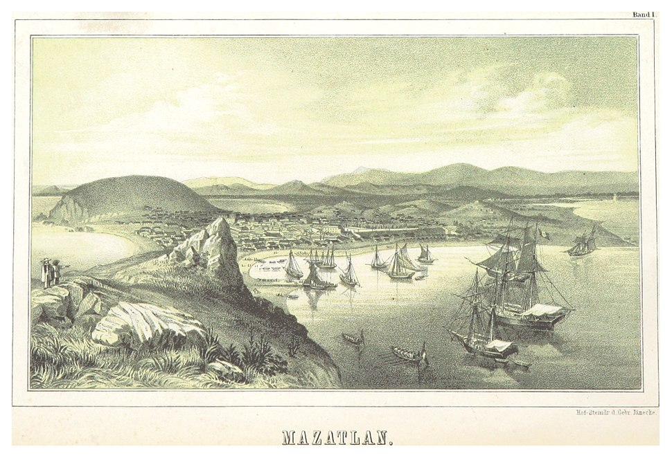SEEMANN(1858) - MAZATLAN, MEXICO