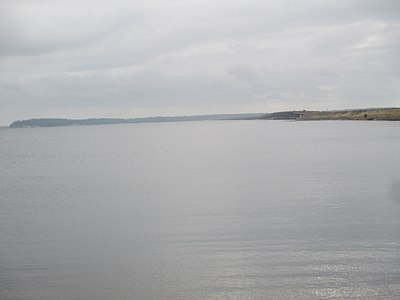 The Sabine forms the Louisiana/Texas boundary at Toledo Bend Reservoir west of Many, Louisiana. Sabine River at Toledo Bend IMG 7524.JPG