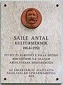 Saile Antal plaque (Budapest-03 Rozgonyi Piroska u 22).jpg