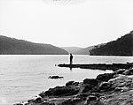 Sailor Bay, Middle Harbor, Sydney (2362650607).jpg