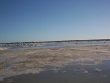 Salt of Manaure, La Guajira - Colombia.png