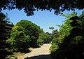 San Mateo Arboretum, San Mateo, CA - IMG 9091.JPG